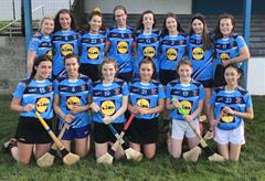 Camogie Success